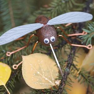 The Alaska Moosquito 4